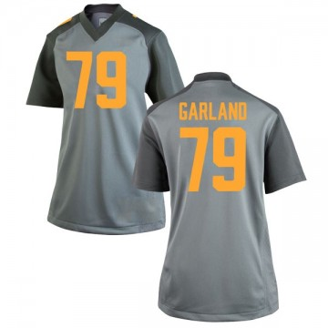Women's Kurott Garland Tennessee Volunteers Nike Game Gray College Jersey